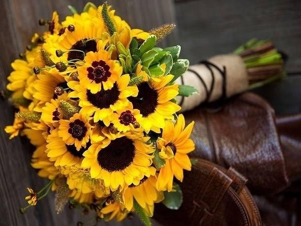 Mơ thấy hoa hướng dương là tốt hay xấu?